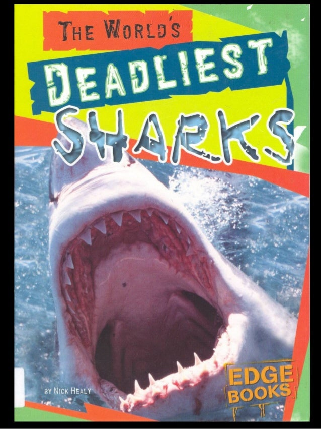 There are over 350 species of sharks Only 30 are dangerous to people  Which sharks are the deadliest?