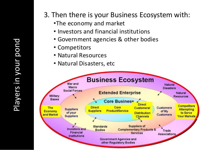 Playersinyourpond 3. Then there is your Business Ecosystem with:•The economy and market• Investors and financial instituti...