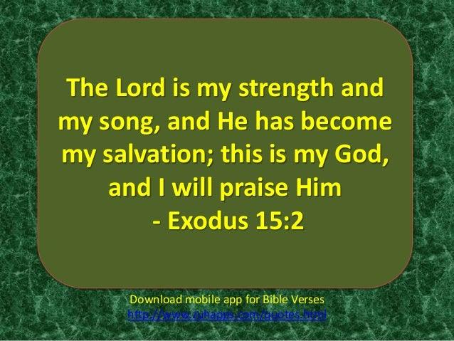 Top 5 Bible Verses