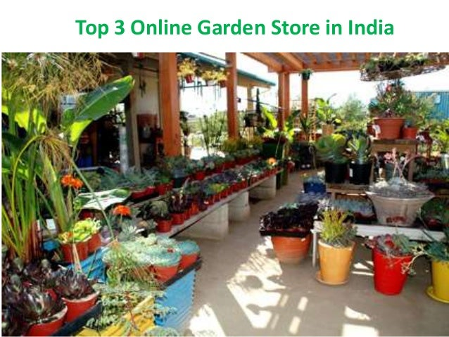Waitrose Garden is the UK's best online garden centre, with everything from garden plants to wildlife accessories. The UK's home of online gardening.