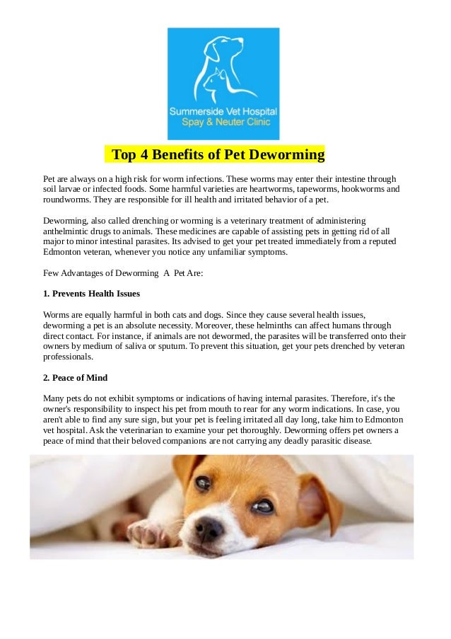 Top 4 Benefits Of Pet Deworming