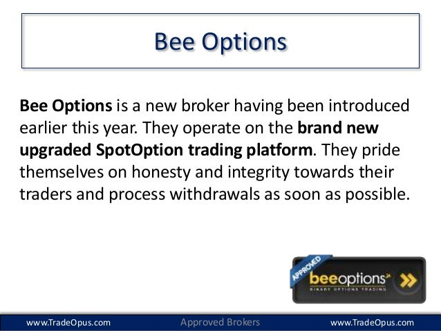 bee options binary options broker