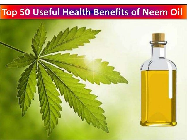 Neem trees are native to India and other parts of Asia and are known as Margosa Tree in English and their botanical term ...