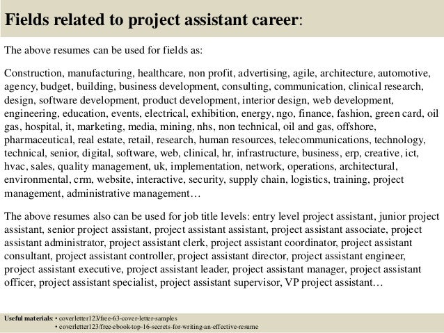16 Fields Related To Project Assistant