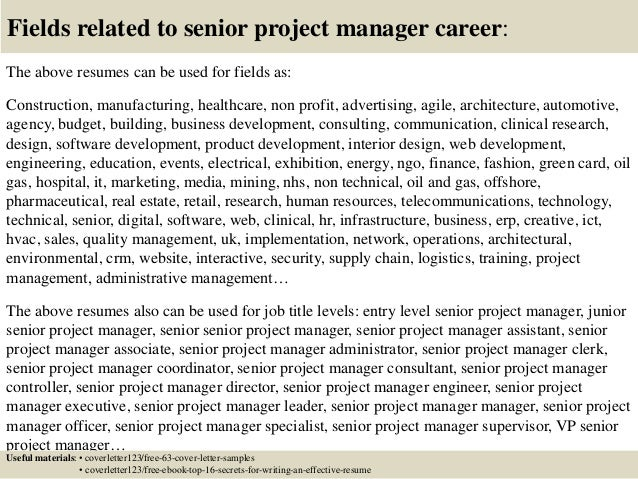 16 Fields Related To Senior Project Manager