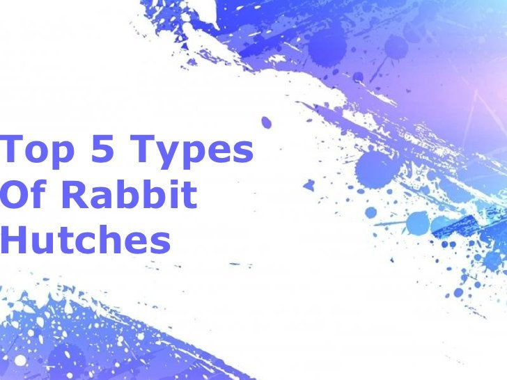 Top 5 TypesOf RabbitHutches              Page 1