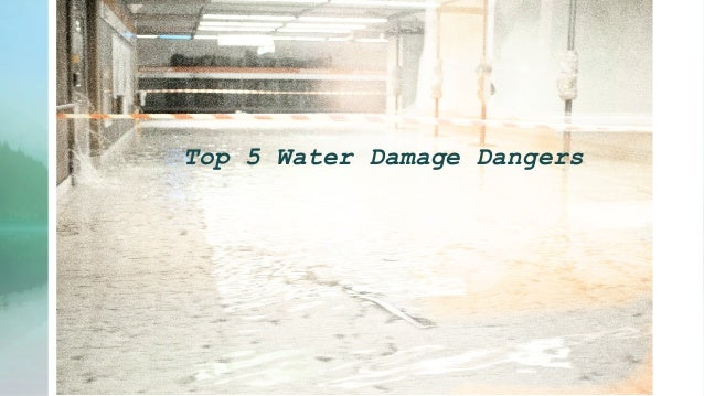 Top 5 Water Damage Dangers
