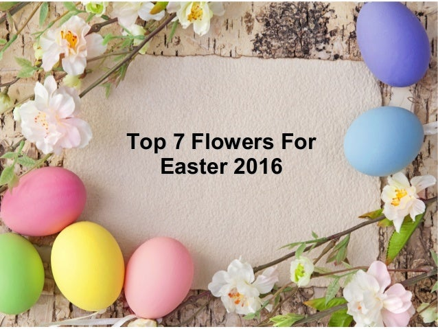 Top 7 Flowers ForTop 7 Flowers For Easter 2016Easter 2016