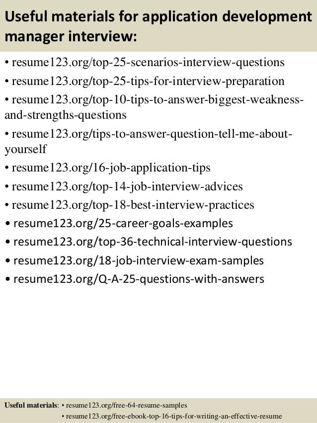 application development manager resume business development