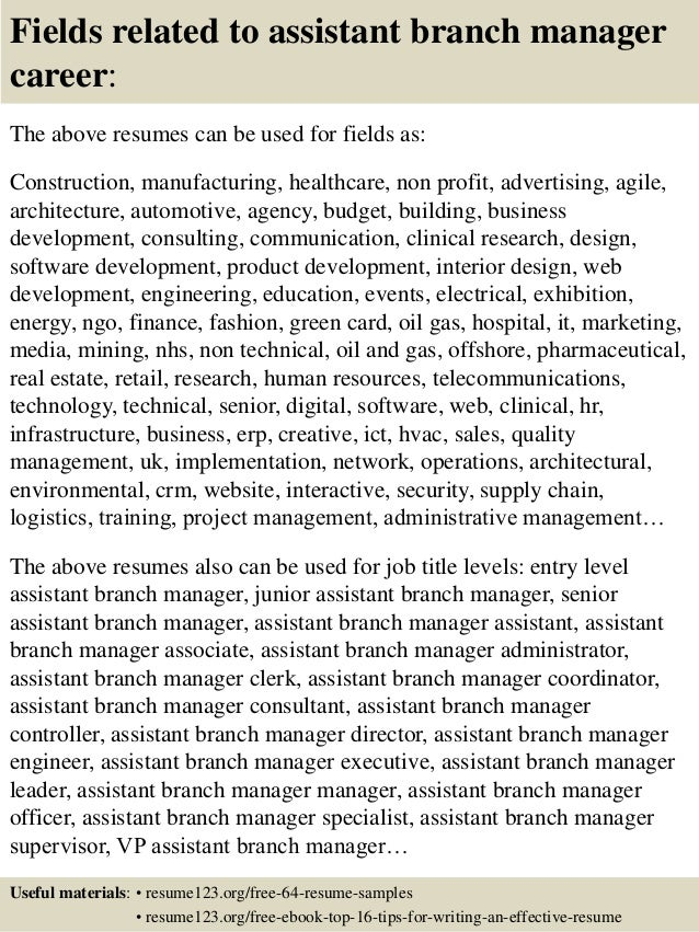 16 Fields Related To Assistant Branch Manager