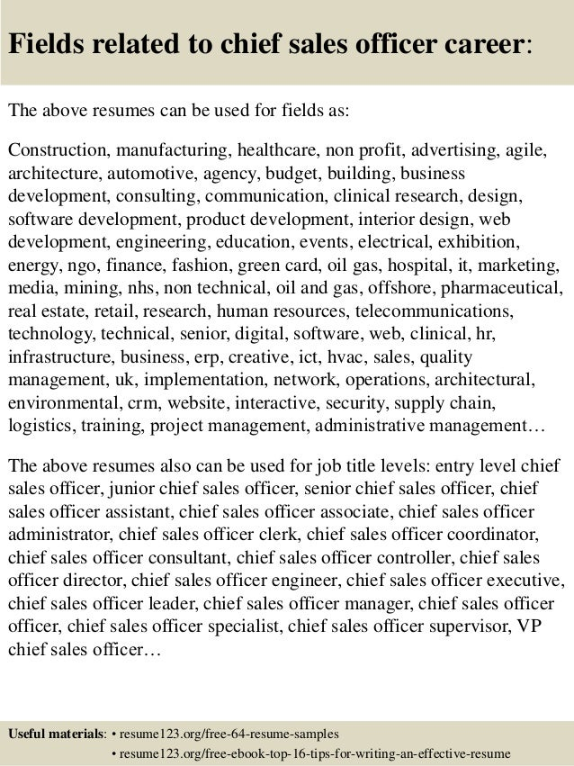 top 8 chief sales officer resume sles