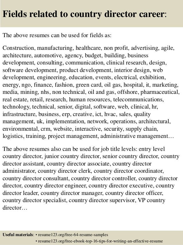 Resume For Director Level. click here to download this vice ...