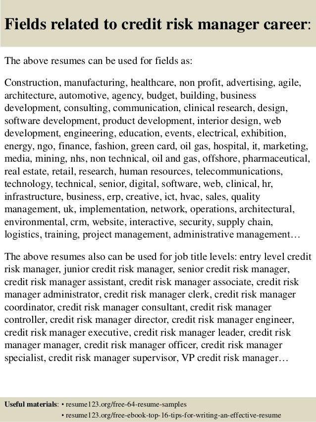 Credit Risk Specialist Resume Professional User Manual Ebooks