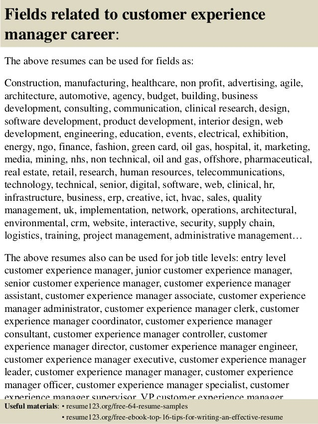 16 Fields Related To Customer Experience Manager