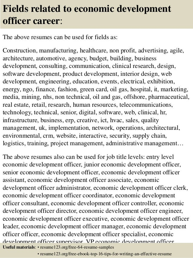 sle resume director of economic development resume