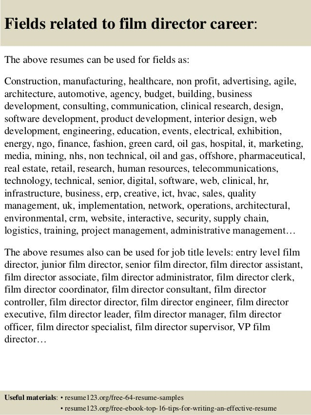 Exceptional Director Of IT Resume Example An Expert Resume Operations Director Resume  Example