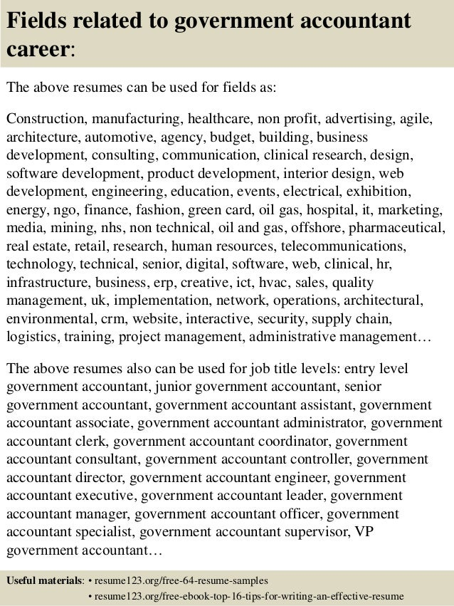 top 8 government accountant resume samples