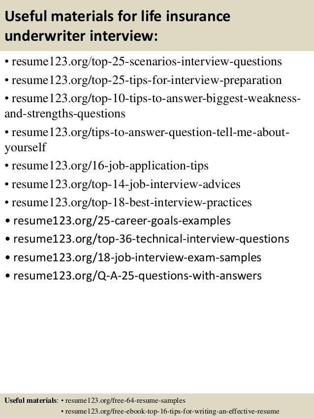 13 - Underwriter Resume Sample