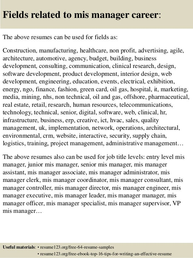 16 fields related to mis manager - Mis Officer Sample Resume