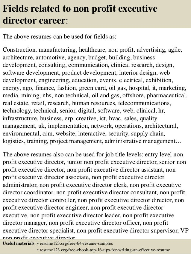 16 fields related to non profit executive director
