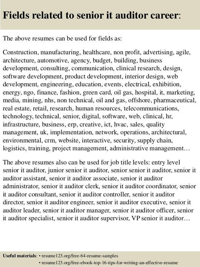 it auditor resumes