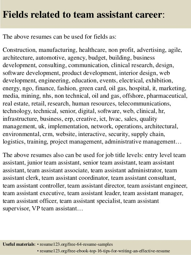 Top 8 team assistant resume samples