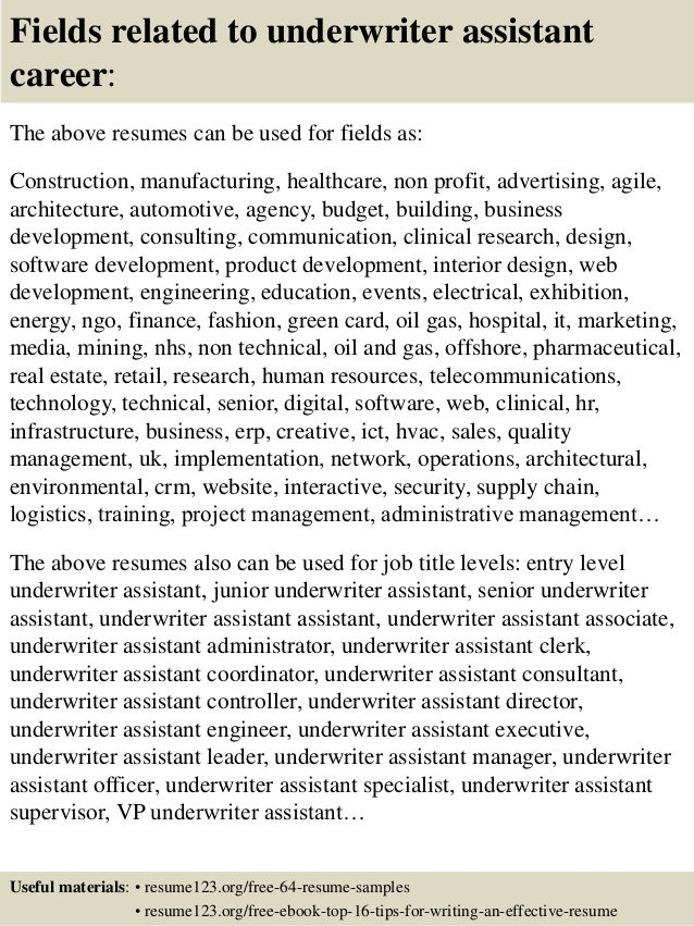 16 Fields Related To Underwriter Assistant