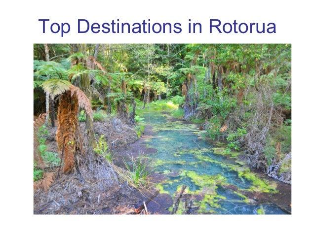 Top Destinations in Rotorua
