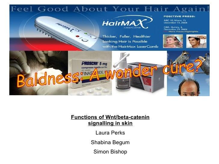 Functions of Wnt/beta-catenin signalling in skin Laura Perks Shabina Begum Simon Bishop Baldness: A wonder cure?