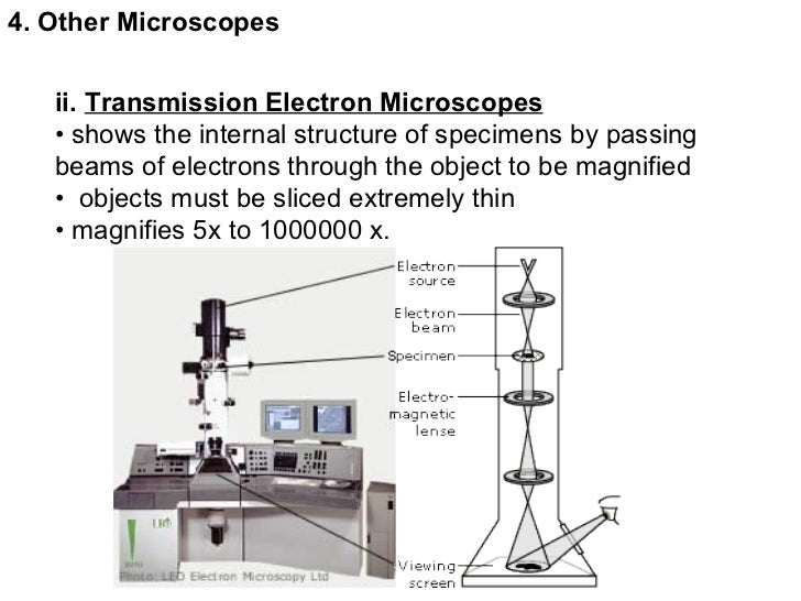 Electron microscope diagram labeled circuit connection diagram topic 3 microscopes rh slideshare net light microscope labeled microscope parts labeled ccuart Choice Image