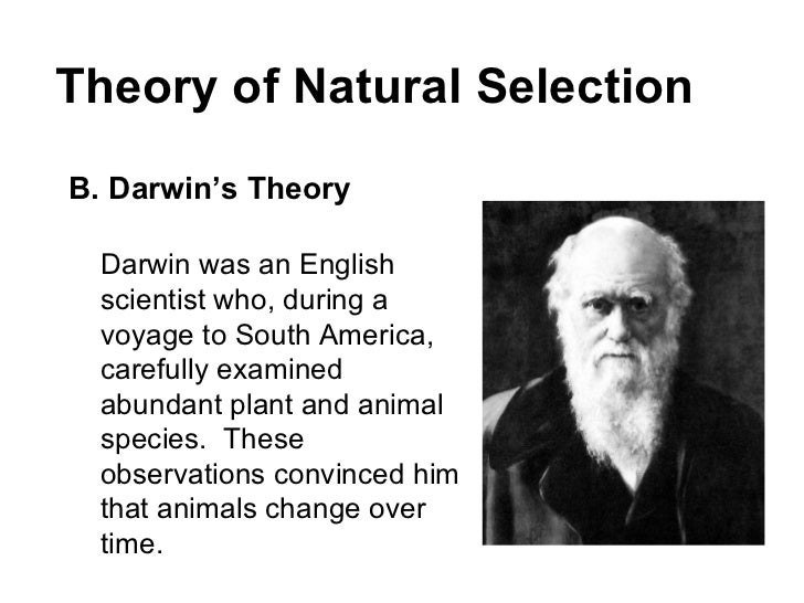 a discussion on darwins theory of evolution Charles darwin the evolution of evolutionary theory but the theory of evolution currently he also devoted a significant amount of space to a discussion of.