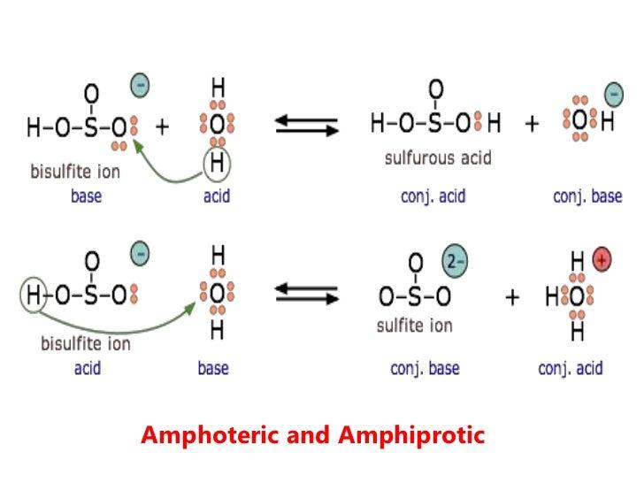 Amphoteric Examples | Pics | Download |