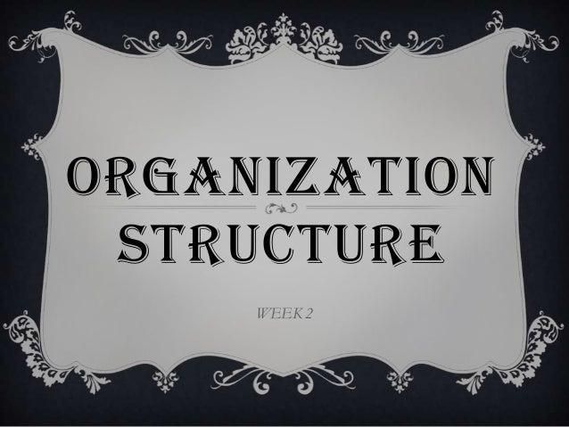 ORGANIZATION STRUCTURE     WEEK 2