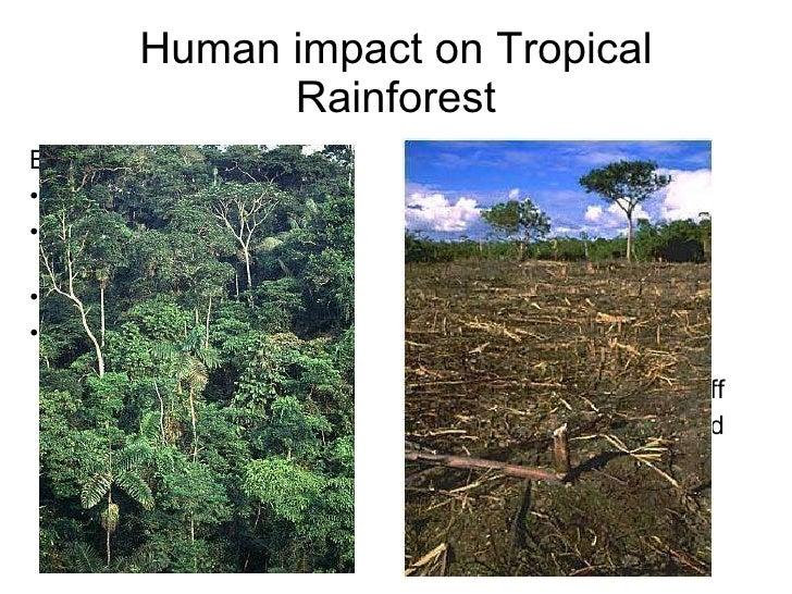 human impact on ecosystems pdf