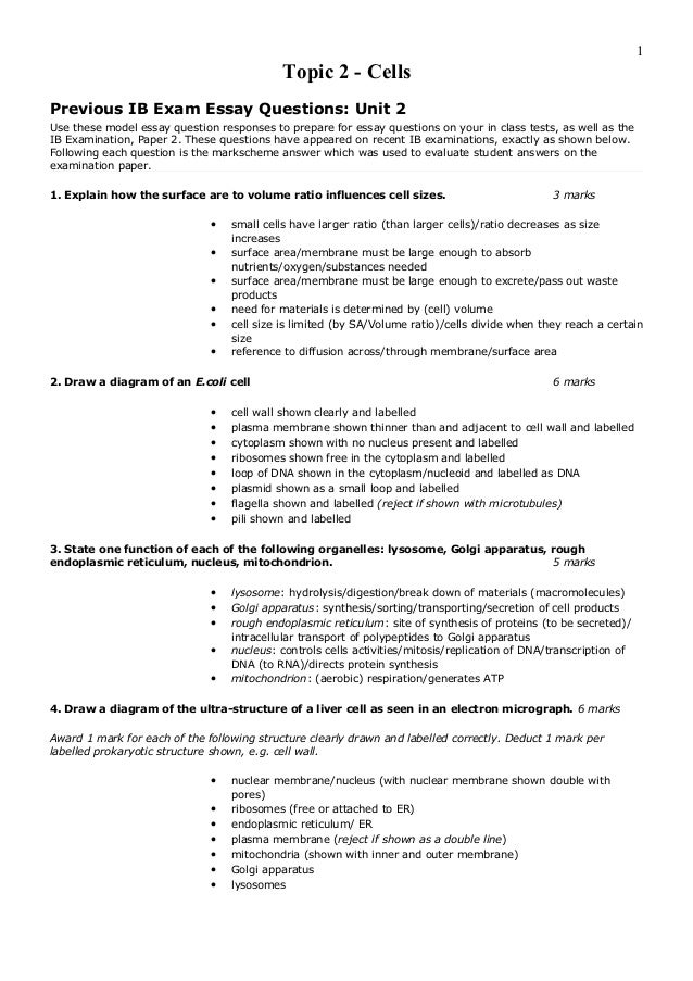 steps to writing a 5 paragraph essay 5 paragraph essay structure