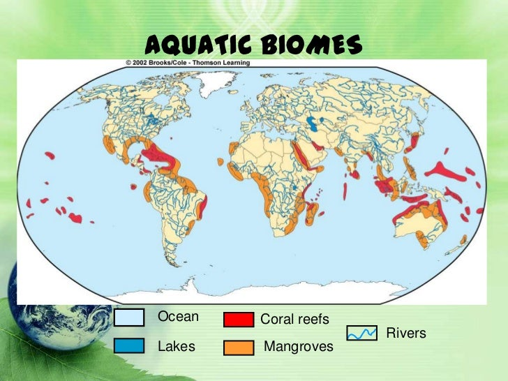 The ecosystem 24 biomes of the world gumiabroncs