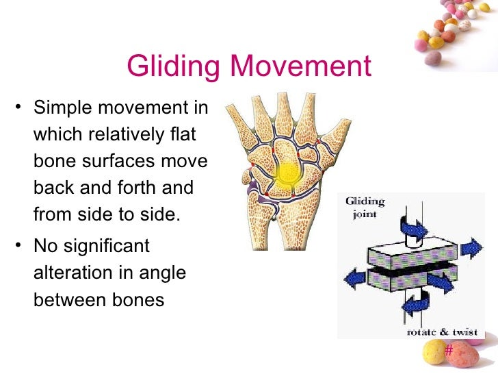 gliding joint examples pictures to pin on pinterest