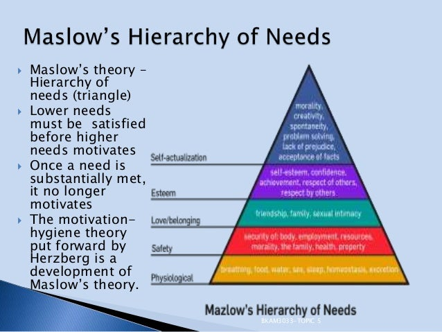 an essay on the hierarchy of needs and hygiene theories Mha 6501 advanced health care management unit iv-essay maslow theory of hierarchy of needs is a way for advanced health care management unit iv-essay 1.