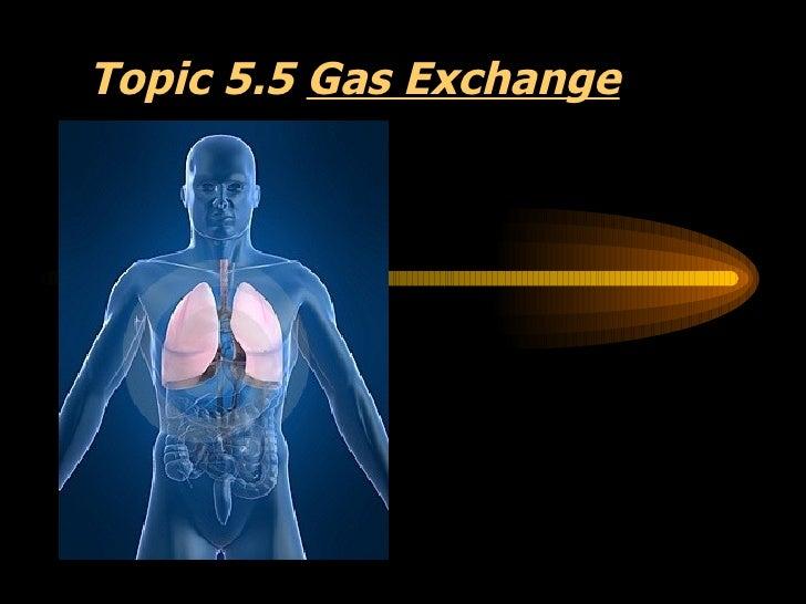 Topic 5.5  Gas Exchange