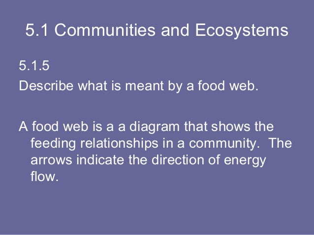 Topic 5 Ecology