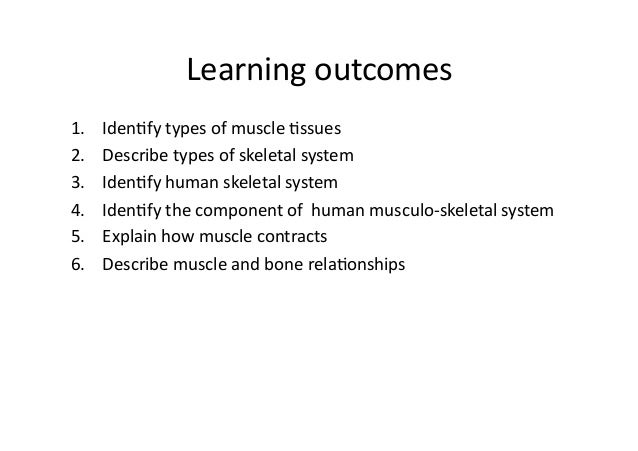 topic 5 muscular system, Muscles