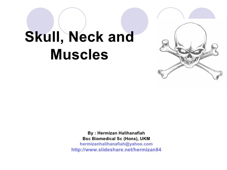 Skull, Neck and   Muscles            By : Hermizan Halihanafiah          Bsc Biomedical Sc (Hons), UKM         hermizanhal...