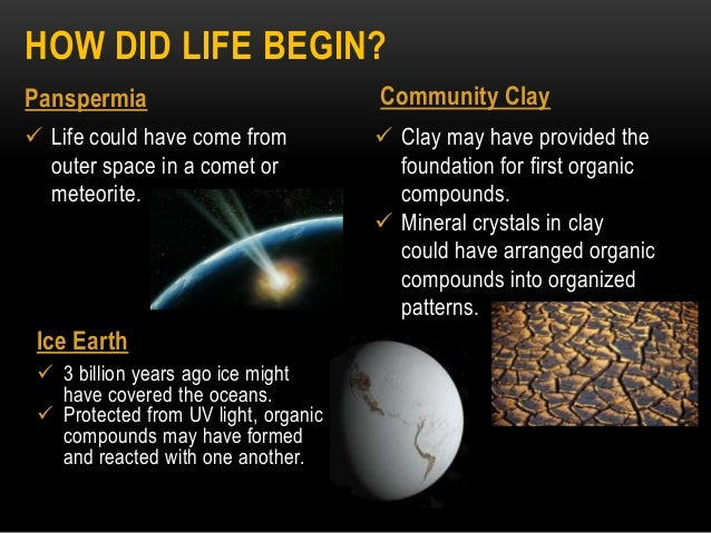 Topic 6 origins of life ppt