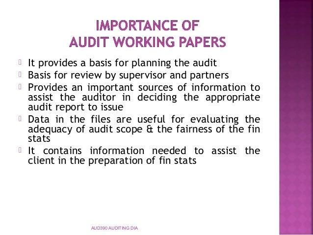 Topic 6 audit documentation