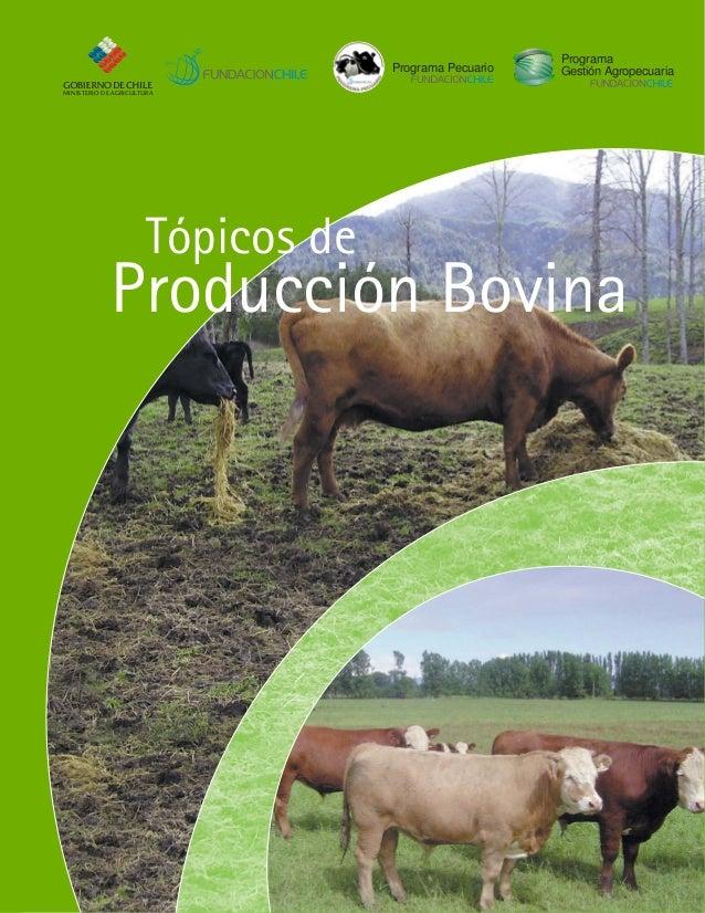 anabolicos para bovinos de engorda