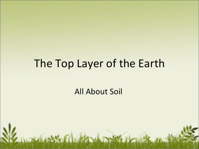 The Top Layer of the Earth All About Soil
