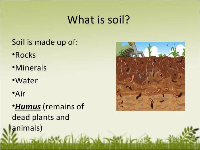 Top layer of the earth for What is soil