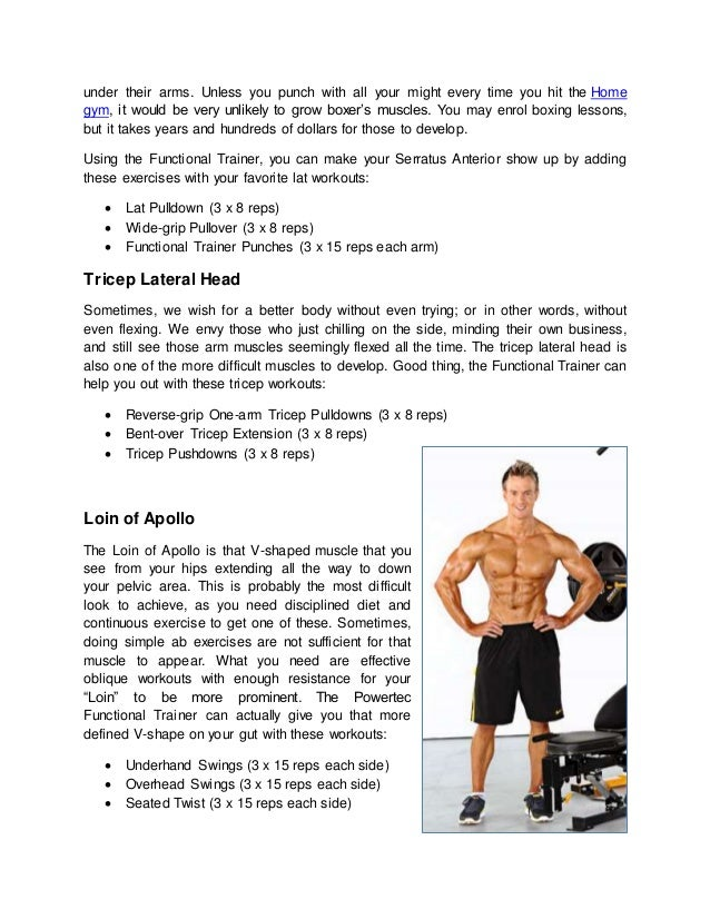 Top Neglected Muscles Of Male Physique