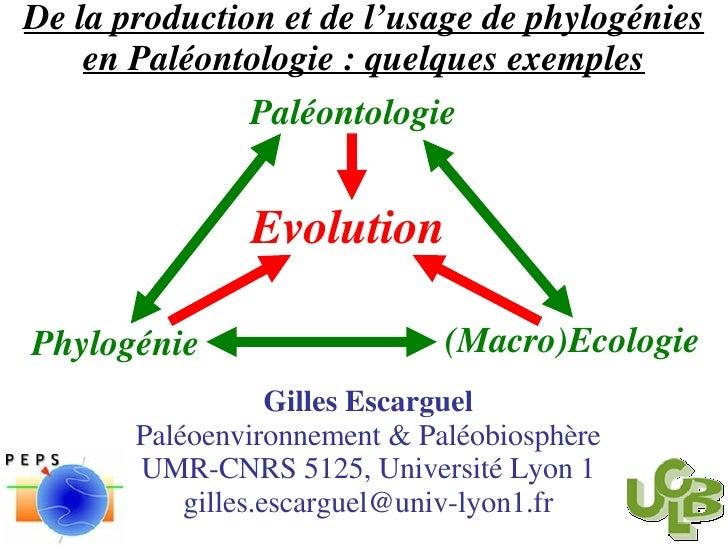 Titre Paléontologie Phylogénie (Macro)Ecologie Gilles Escarguel Paléoenvironnement & Paléobiosphère UMR-CNRS 5125, Univers...