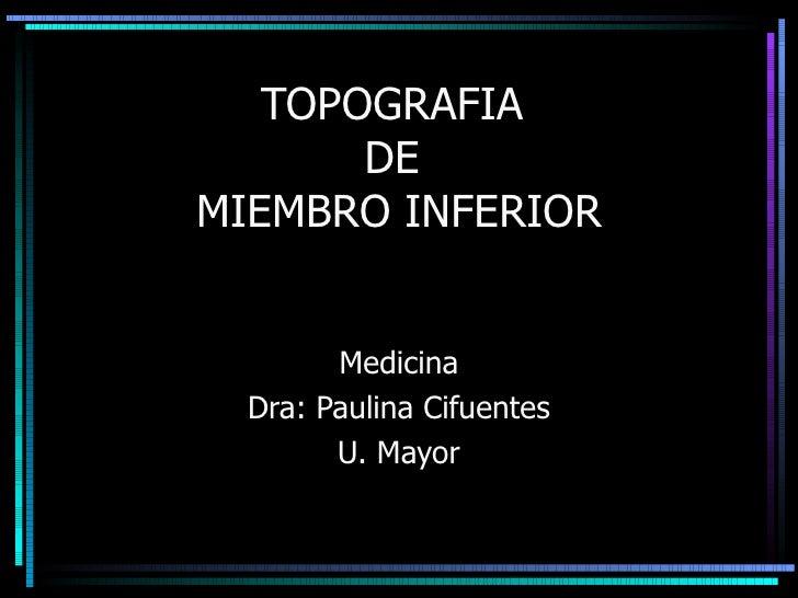 TOPOGRAFIA  DE  MIEMBRO INFERIOR Medicina Dra: Paulina Cifuentes U. Mayor